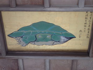 江の島 八方睨みの亀