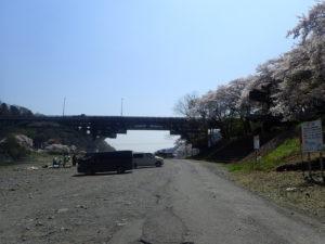 小倉橋とサクラとBBQ
