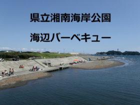 県立湘南海岸公園バーベキュー