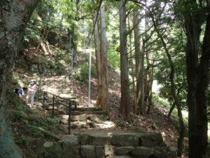大山 女坂 傾斜 石段