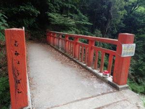 無明橋 ヤマビル