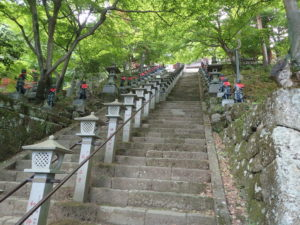 大山寺 階段 モミジ
