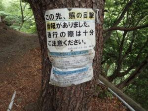 阿夫利神社下社 森林看板