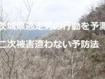 茨城県逃走男の行動を予測 二次被害に遭わない予防法