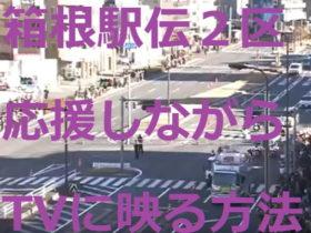 箱根駅伝2区応援しながらTVに映る方法