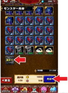 ドラゴンエッグ 裏技10
