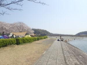 上大島キャンプ場 眺め
