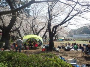 上大島キャンプ場 テント タープ