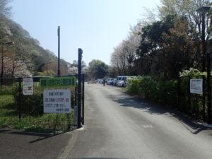 上大島キャンプ場 第4駐車場