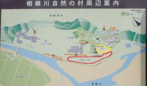 上大島キャンプ場 芝生広場