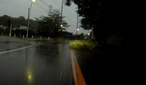 台風散乱物:倒木6