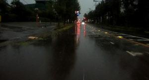 台風散乱物:落ち葉とガレキ