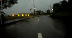 台風散乱物:倒木7
