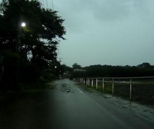 台風散乱物:轍(わだち)