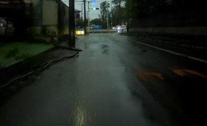 台風散乱物:倒木9