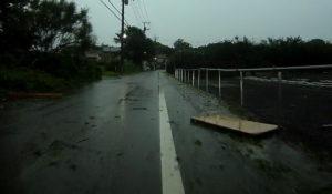 台風散乱物:木製物2