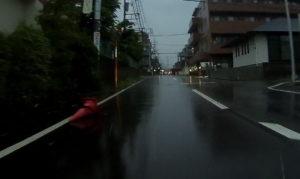 台風散乱物:カラーコーン2