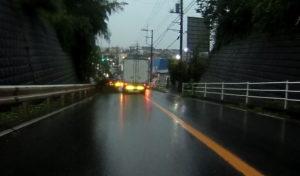 台風散乱物:垂れた木