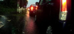 台風散乱物:路側帯