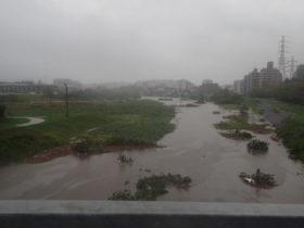 台風19号 港北区情報