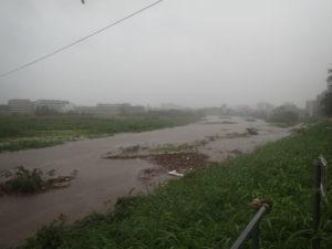 ワールドカップ大橋:鶴見川